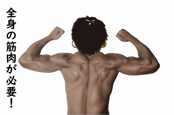 全身の筋肉が必要