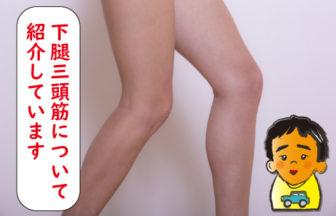 下腿三頭筋について