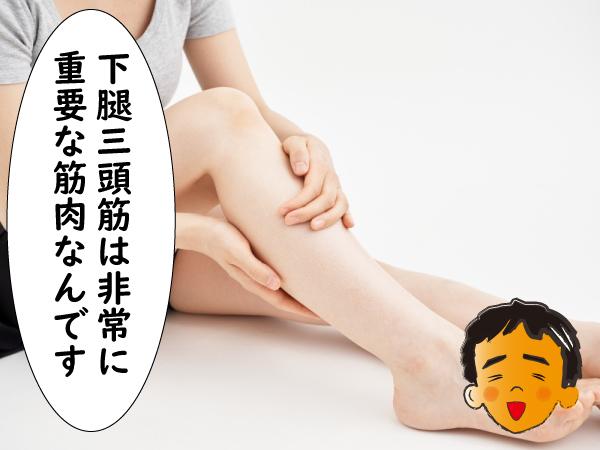 下腿三頭筋は重要な筋肉