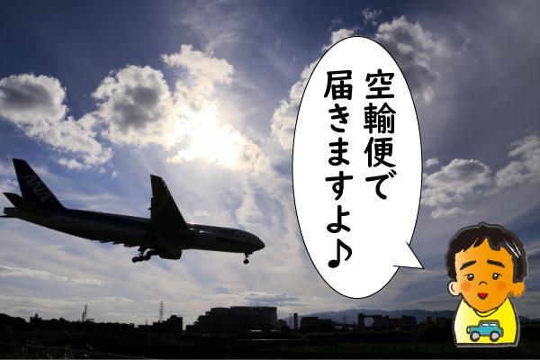 ヨヒンビンは空輸便で届きます