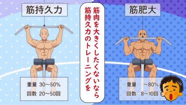 筋持久力と肥大