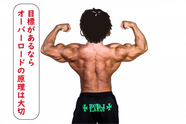 体を鍛えるために