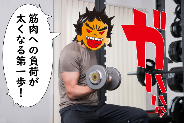 力学的筋肉が太くなる