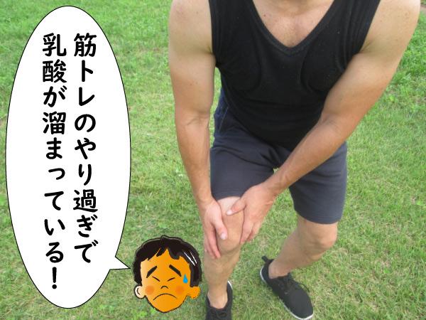 乳酸で筋肉が太くなる