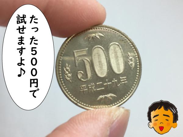 500円で試せる
